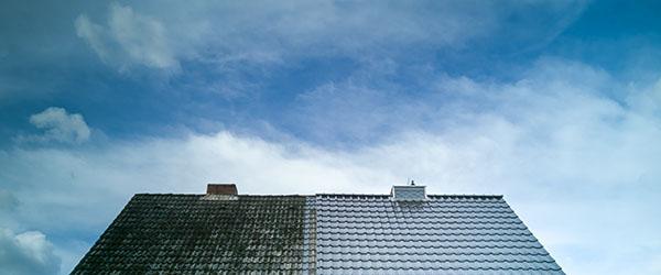 avant apres demoussage toit