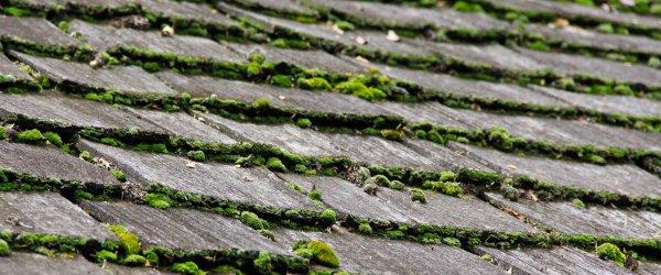 entretien toit ardoise