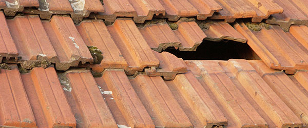 fuite toiture