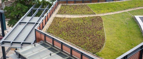 tarif toit terrasse